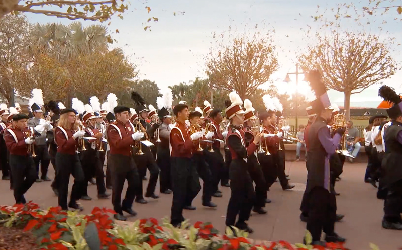 Thanksgiving Parade of Band Experience